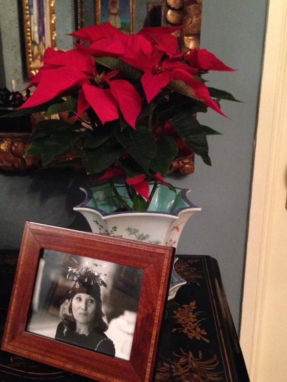 Flores de pascua dando un toque navideño